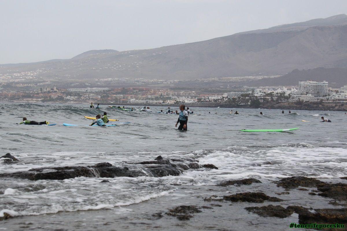 Škola surfování