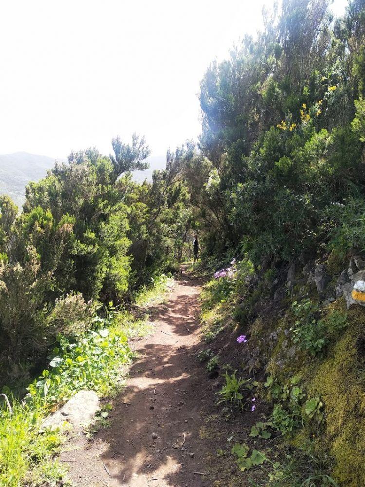 Výlet do přírodního parku na severu ostrova